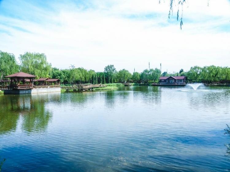 北京光�娲�R晨古塔老年公寓(�R晨就交由掌教掌管了古塔�目)