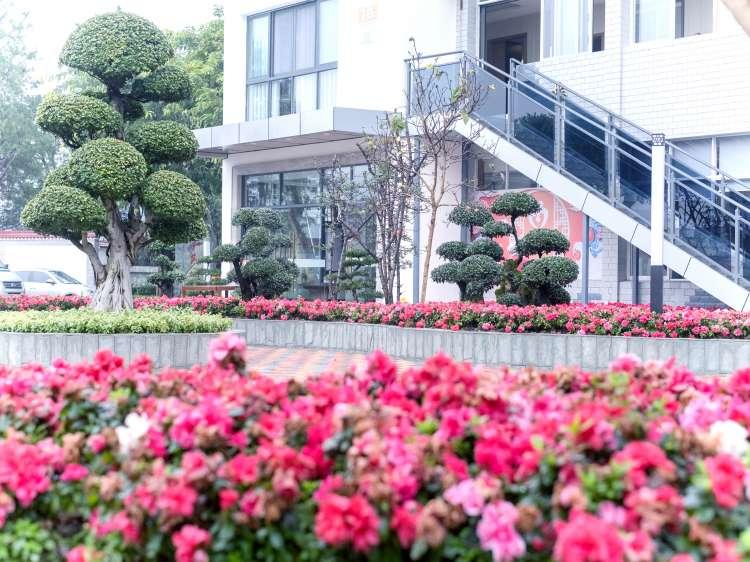 重庆市巴南区狮子山老年公寓