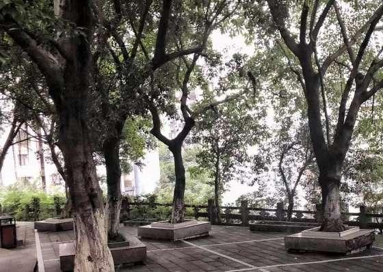 青风酒店式老年养护中心