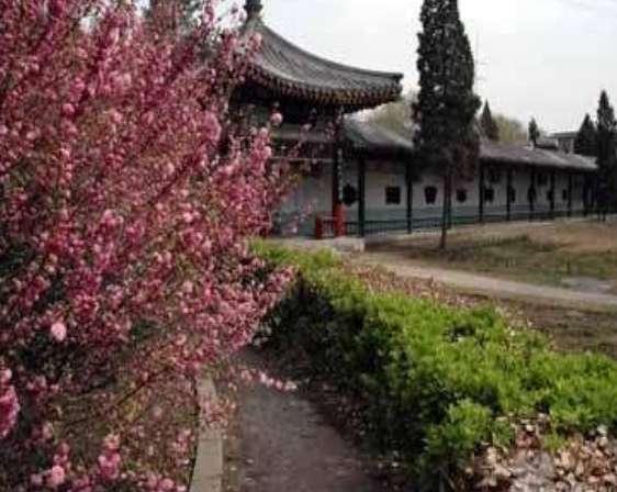 天津市河北区中山颐寿园河北养老院