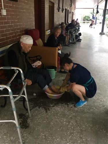 成都市纯德养老中心服务图片