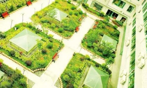 南京易发红日养老院环境图片