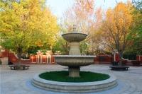 悦年华颐养中心(北京大兴黄村镇)外景图片