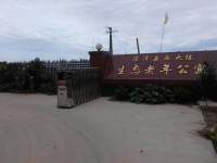 深泽县西大陈生态老年公寓外景图片