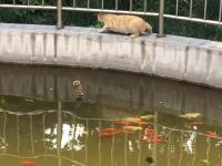 北辰区红光老年公寓环境图片