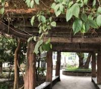 重庆沙坪坝区兴艺老年公寓环境图片